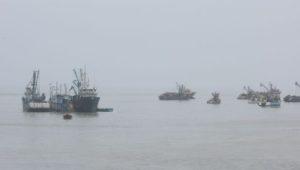 pesca-biomasa