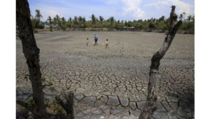 A father with his children walk over the cracked soil of a 1.5 hectare dried up fishery at the Novaleta town in Cavite province, south of Manila May 26, 2015. President Benigno Aquino III approved the proposal of the National Food Authority (NFA) to import further 250,000 tonnes of rice as the drought-inducing El Nino weather phenomenon continue to affect farmlands in the provinces resulting to more damaged crops.    REUTERS/Romeo Ranoco         TPX IMAGES OF THE DAY