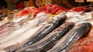 pescadosenmercadointerior