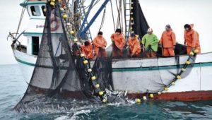 pescadores_artesanales