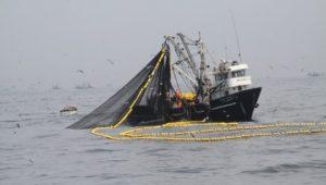 sector_pesquero
