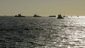oceanos 2