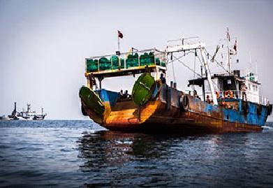 barco chino 2018