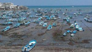 mar ecuatoriano se seca