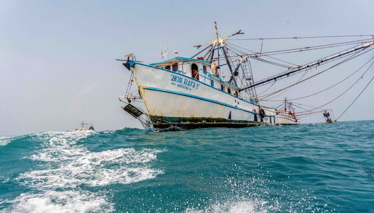pesca en mexico