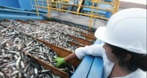 Los desembarcaderos pesqueros en el Perú