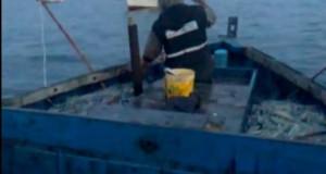 Pesca de Calamar en Paita