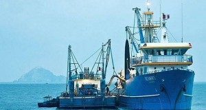 Rusia reabrió mercado para 18 proveedores de Pescado peruano