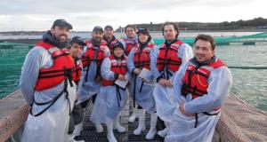 CHILE – Inspectores japoneses evalúan sistemas de control sanitario