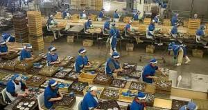 Titular de Trabajo recibirá a conserveras chimbotanas