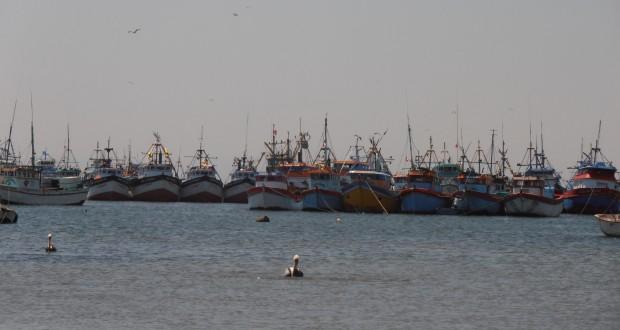 Lanchas ilegales de arrastre arrasan Merluza en Paita
