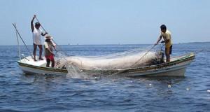 Sectores agrícola y pesca impulsarán crecimiento en julio, estima el BCR