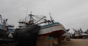 Harineros marginan lanchas de 40 y 50 toneladas