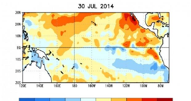 Probabilidad de El Niño disminue cerca de 65% en otoño y principios de invierno