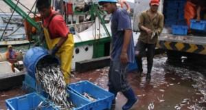 Tumbes: Pescadores cuestionan a autoridades en reunión