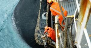 Pesqueras serían sancionadas por arrojar Anchoveta joven al Mar