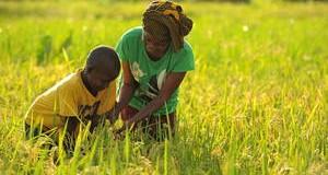Más allá del Año Internacional de la Agricultura Familiar