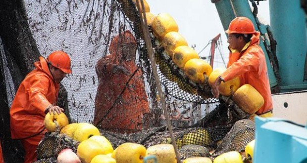 Pre publican proyecto para impulsar pesquería de Atún
