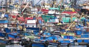 Autorizan a TESACOM para dar servicio de seguimiento satelital a Embarcaciones pesqueras