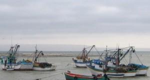Conozca las cifras del difícil 2014 de la Pesca peruana