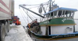 Exportación de Pesca para Consumo Humano Directo creció 11%