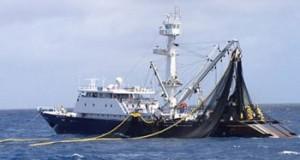 Países del Pacífico oriental buscan mejorar la gestión del Atún