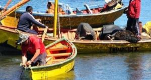 CHILE -Consejo Zonal de Pesca acuerda medidas para recuperación de la Corvina