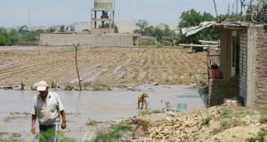 Enfen eleva previsión de magnitud de El Niño de débil a moderado
