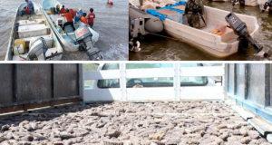 Puertos del Callao y Paita serán fiscalizados por Dinandro. ¿Y Chimbote?