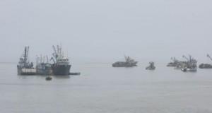 Temporada de Pesca podría disponer de 2.5 millones de toneladas de biomasa