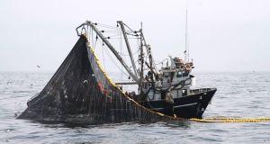 Suspenden actividades extractivas de Anchoveta en zona del litoral
