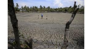BRASIL – Fenómeno El Niño provocaría sequía en norte de Brasil y fuertes lluvias en el sur