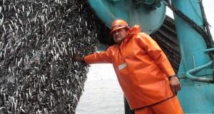Pesca creció más de 25% en la mitad de primera temporada