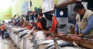 PIURA – Pescadores artesanales se quejan por bajos precios