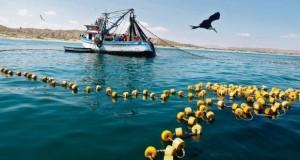 PUNTA SAL – Pesca ilegal pone en riesgo a pescadores artesanales