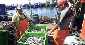 BCR: Pesca y minería metálica apuntalarán el crecimiento de PBI