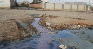 Empresas hidrobiológicas de Piura deben actualizar Estudios de Impacto Ambiental