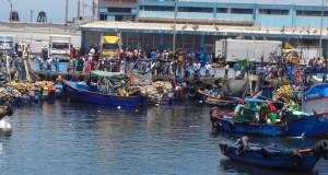Artesanales y buzos de Ilo celebrarán a lo grande el Día del Pescador