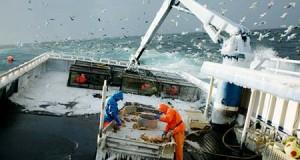 Régimen del Mar protegerá a más trabajadores