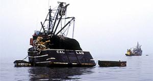 Nueva suspensión temporal de pesca de Anchoveta