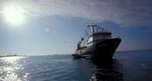 CHILE – Industria pesquera reiniciará actividades en el norte