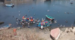 Autoridades de Piura ejecutan acciones para combatir Pesca ilegal
