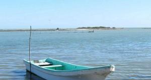 "MEXICO – Veda ""hace agua"" al Sector pesquero"