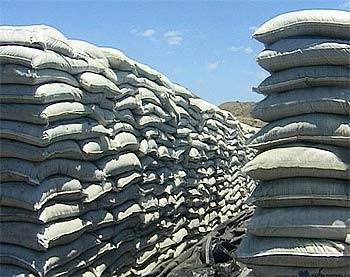Fuerte suba de exportaciones de Harina de pescado en el primer semestre