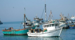 PIURA – Unen fuerzas para combatir Pesca ilegal en Sechura