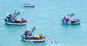 TALARA – Piratas ecuatorianos asaltaron y asesinaron a pescador en alta mar