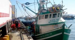 Reglamento de participación ciudadana en pesca y acuicultura será sometido a consulta hasta setiembre