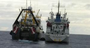 CHILE  – Al Senado acuerdo que frena pesca ilegal en aguas internacionales