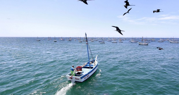 Emprenden cruzada en Piura para sensibilizar sobre pesca responsable