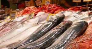 ESPAÑA – Expertos de 24 países abordarán en Canarias la lucha contra la pesca ilegal